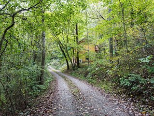 Brand New Home In A Wooded Private Paradise - 7 Miles From Downtown Asheville!