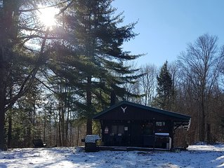 Catskills Mountain Cabin - Available Year Round
