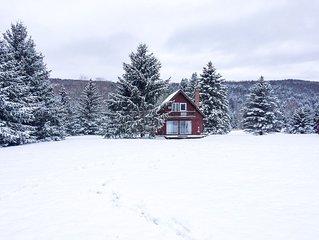 Cozy Catskill Chalet w/ HotTub