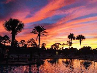 (OPEN 8/16-8/21)HangLoose14ad Purple  Parrot  Resort Perdido Key FL