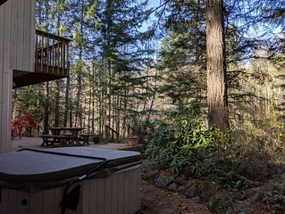 Rivers Edge Retreat - Riverfront, hot tub, woodstove, ski & mountain vacation!