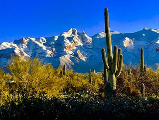 Desert Retreat in the Catalina Foothills of Tucson