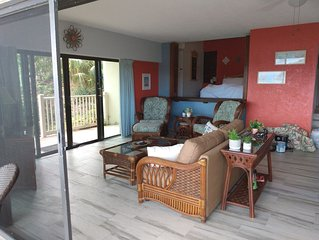 Taylor's Retreat - Amazing Views! 1BR/1BA Remodeled Book Now for Summer Openings
