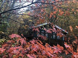 Falling Leaf Cabin - a true cabin in the woods in a private setting