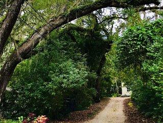 Live Oak Cottages In town! Beautiful Live Oak Trees! Cozy!
