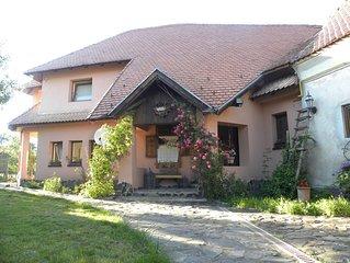 Villa de  Lemeny - Zarnesti
