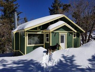 Serene Charming Cabin in Arrowbear