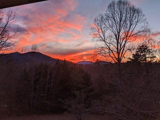 Critter Hill Studio Apt. close to downtown Asheville and the Blue Ridge Parkway