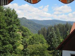 Ferienwohnung Forbach fur 2 - 4 Personen mit 2 Schlafzimmern - Ferienwohnung in