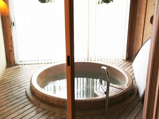 Yr Round Mtn Retreat - SlopeSide twnhse w/ Hot Tub for Winter - A/C  for Summer