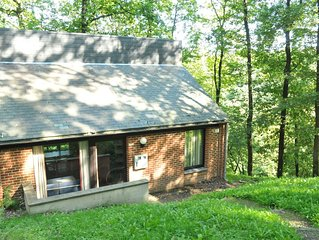 Nicely furnished bungalow with a fireplace near the Maas