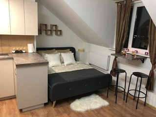 Cozy Vilnius Old Town Apartment with a Wonderful View and King Size Bed