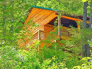 Secluded Mountain Cabin on a Large Estate with Water Fall, Hiking Trails & Creek