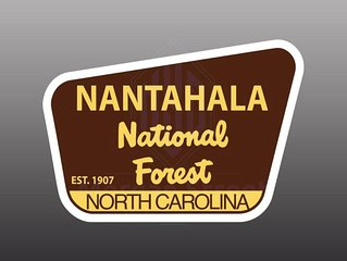 NANTAHALA  FOREST MOUNTAIN TOP CHALET