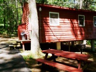 The Gold Eagle Cabin 15