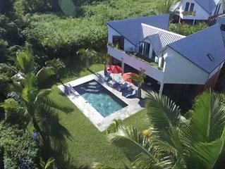 Grande Villa d'architecte avec piscine en ardoise et jardin arboré