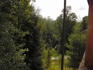 View from Roost Cabin