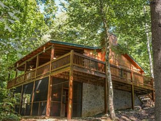 Dog-friendly cabin with private hot tub, wood stove, and screened-in porch!