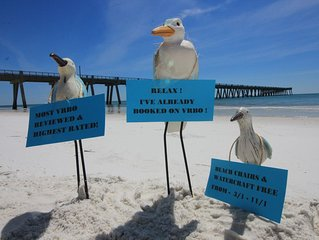 MOST REVIEWS & BEST RATED ON NAVARRE BEACH ! FREE CHAIR SETUP & WATERCRAFT ! !!