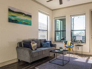 Luxurious Downtown Houston 1BR Apt