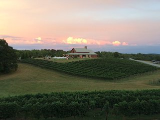 Overlooks CeNita Vineyard and Venue - Located Next to Winery