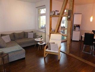 Großes, helles, renoviertes 3 Raum Apartment Nähe Zentrum  free Wifi, Parken,