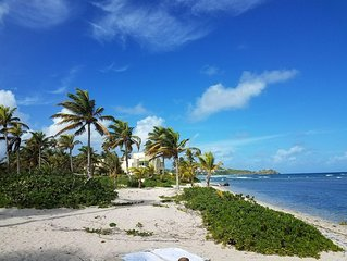 Dolphin's Paradise at Pelican Cove: Beachfront, late spring availability!