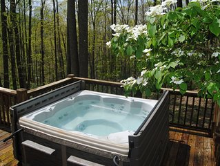 Amazing Value!    Hot TUB! Mountain View!!