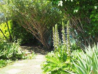 Grande maison calme et agreable avec piscine et jardin au ceour d'une impasse