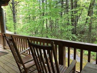 Willoughby Woods Cabin ~ Near Brevard NC -Hike, Bike & Waterfalls (Free Night)