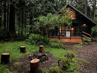 Charming Mt Hood Chalet, minutes to Mt fun! Woodsy feel.