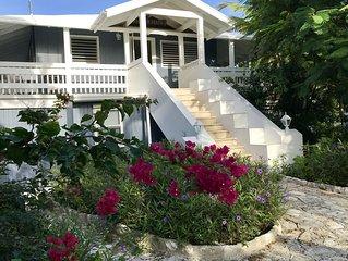 Tree House By Grace Bay Beach - Presidential Suite 3b/2.5b,sleep 6,pool,WiFi