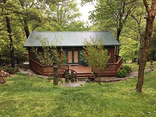 New!! Fern Cottage by Buffalo Mountain Getaway