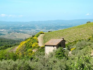 Apartment Podere Cellole  in Castellina in Chianti, Siena and surroundings - 4
