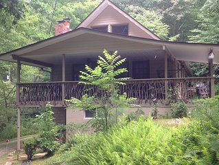 White Squirrel Lodge - Family friendly, pond & stream, breezy porches & wildlife