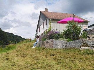Duplex atypique de 95 m2 dans une ferme vosgienne traditionnelle, classe 3*.