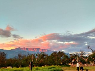 Black Walnut Ranch Ojai