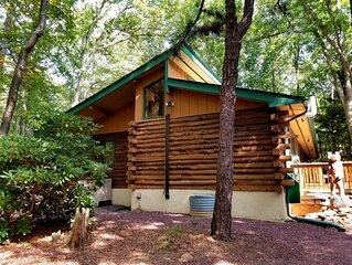 Honey Bear Log Cabin in Jim Thorpe