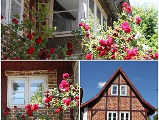Wohnen mitten im schönsten Viertel von Lüneburg