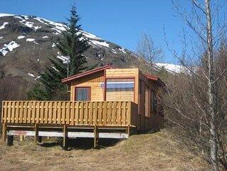 Ferienhaus Grimsnes für 1 - 2 Personen mit 1 Schlafzimmer - Ferienhaus