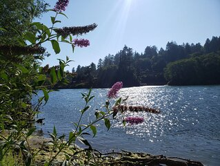 Chetco Charm! Private swimming, kayaking & fishing on 5 private Acres!