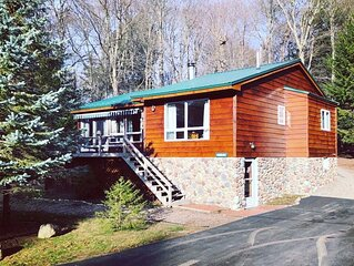 Cozy, Quiet Old Forge Getaway, just Minutes from The Fulton Chain Lakes