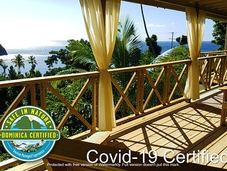 Gorgeous timber cottage, Large garden, Short walk to the beach, Ocean view