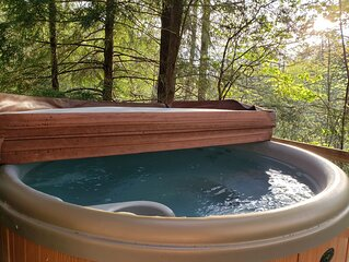 Hot Tub, WiFi, Arcade - Wooded Family Cabin - Hidden Chalet - Getaway to Red Riv