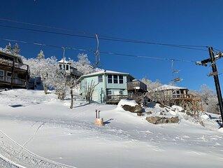 Slopeside Ski Cabin, Endless Views, Fireplace, Ski In Ski Out,