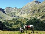 Ballades à cheval sur les nombreux sentiers de montagne; départ à 4Km de la maison.
