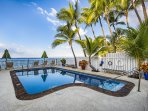 Relax Poolside and Watch Whales Slumber By and Dolphins Dancing Doing Their Ballet