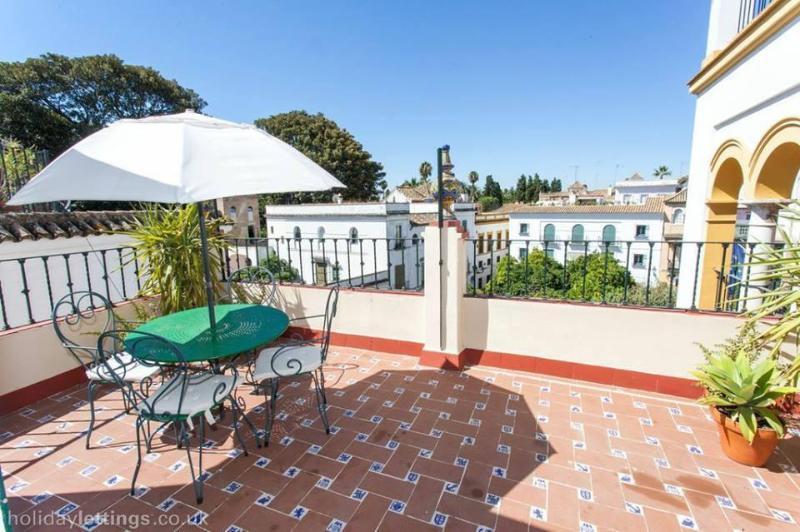 SANTA CRUZ TERRACE, holiday rental in San Jose de La Rinconada