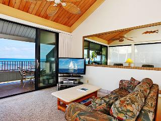 Wonderful Condo in Lahaina (32)