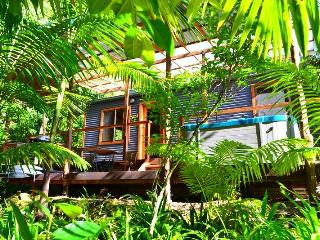 WATERFALL HIDEOUT - Rainforest Spa Cabin, Limpinwood